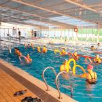 ¡Todos al agua! Actividades de piscina Los Olivos